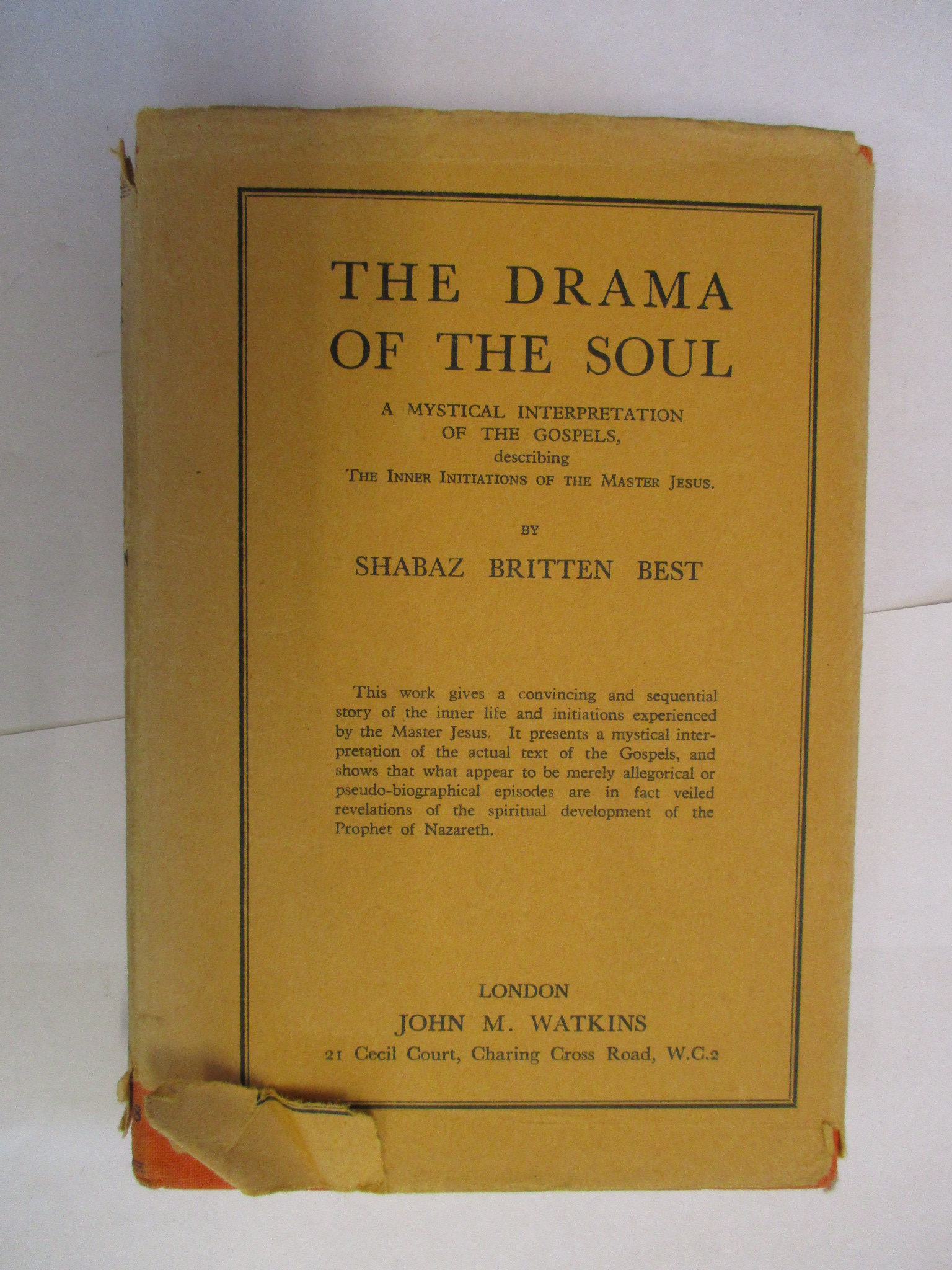 Image for THE DRAMA OF THE SOUL